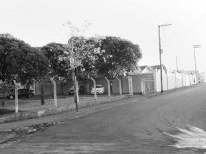 Local: Escola Jardim Guanabara Rua Cel. Irlandino Barbosa Sandoval, s/nº Seções nº 56, 62, 70, 80, 88 e (98 nova) Aptos a votar: 2.033